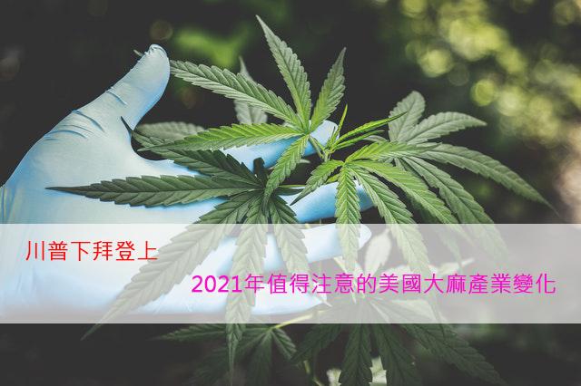 川普下拜登上 – 2021年值得注意的美股大麻產業變化